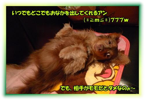 0907120075a.JPG