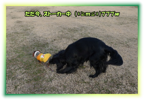 1002210048a.JPG