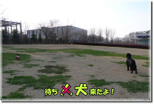 1003220029a.JPG