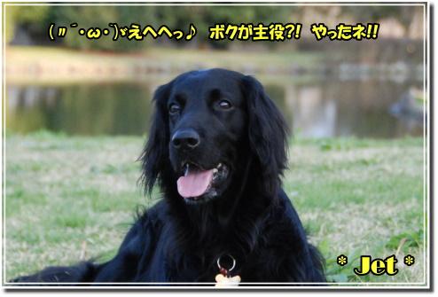 1004170043b.JPG