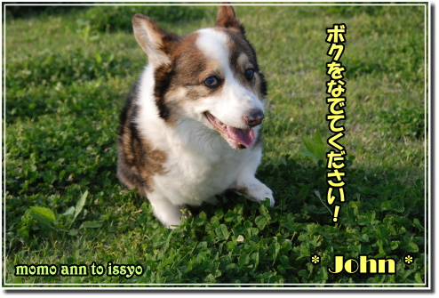 1005030038a.JPG