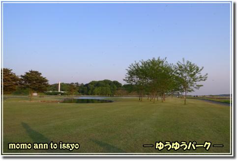 1005170018a.JPG
