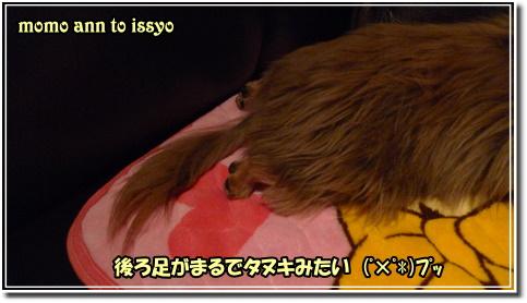 1006030047a.JPG