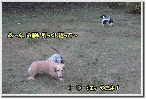 0910010009a.JPG