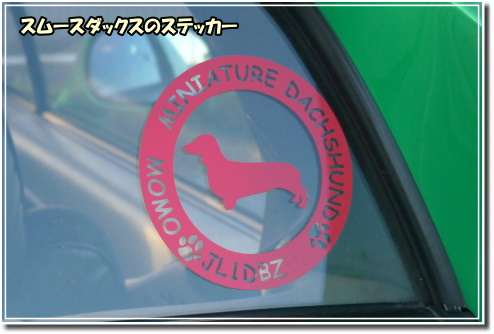 0910080037a.JPG