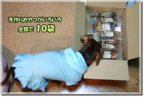 1001110033a.JPG