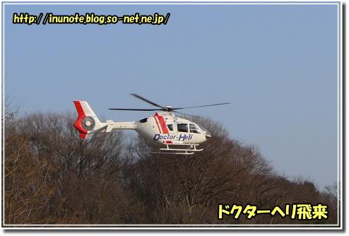 1002230114a.JPG