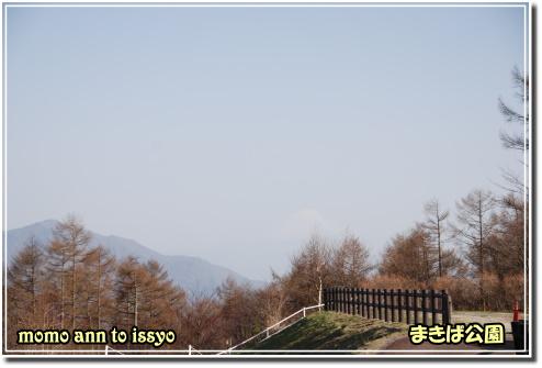 1004290012a.JPG