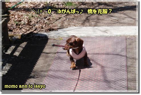 1005010138a.JPG