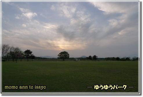 1005060093a.JPG