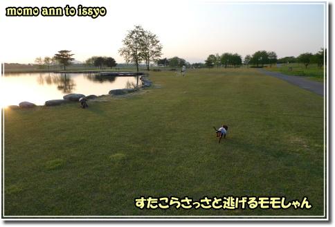 1005170029a.JPG