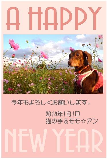 Amebacard.jpg